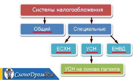 Исключение Кодов Оквэд Пошаговая Инструкция